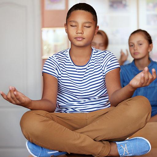 school wellness consultant programs